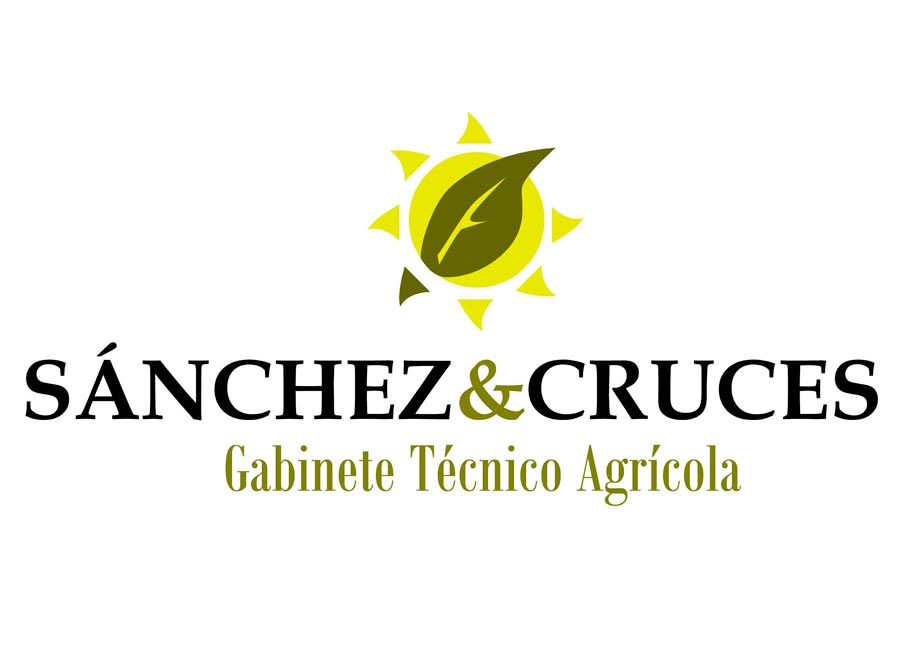 sanchez-cruces